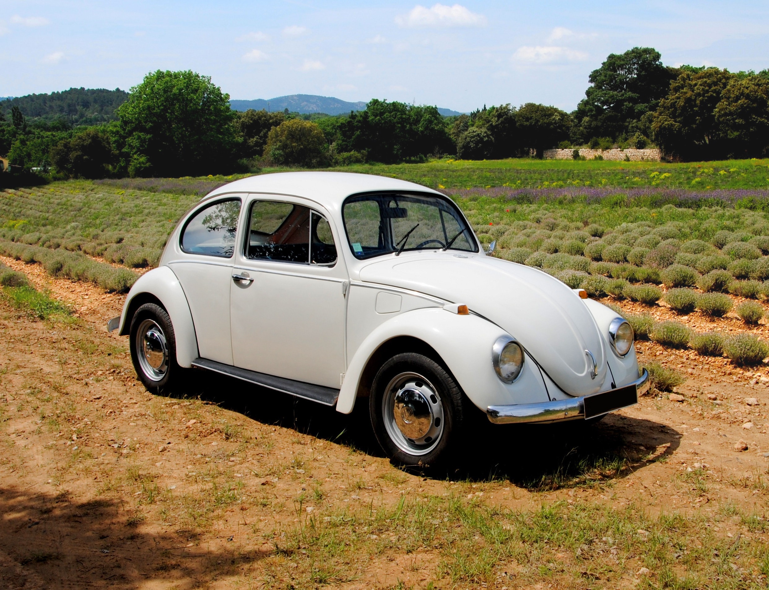 Volkswagen Coccinelle location voiture ancienne