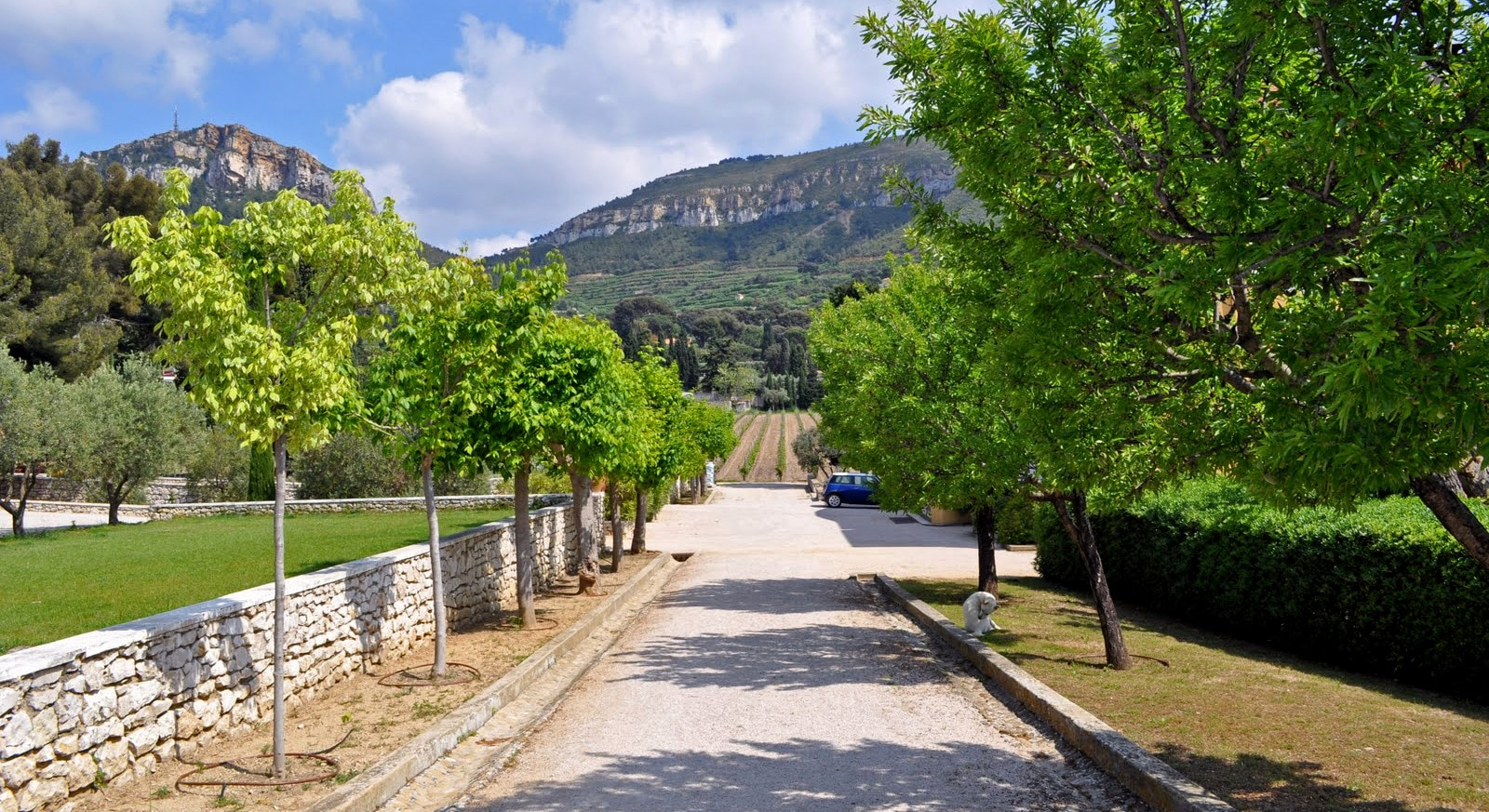 Cassis location voitures